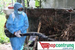 phun thuốc diệt côn trùng