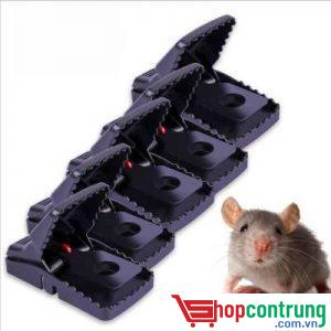 Bẫy chuột hàm cá sấu nhỏ