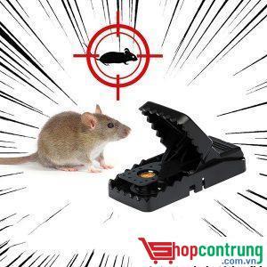 bay chuột
