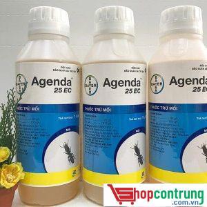 agenda 25EC