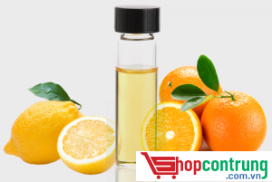 diệt mọt gỗ bằngtinh dầu cam