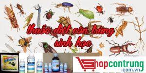thuốc xịt muỗi có độc không