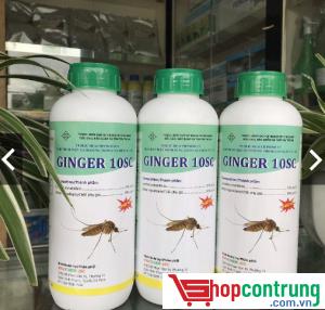 thuốc Ginger 10SC