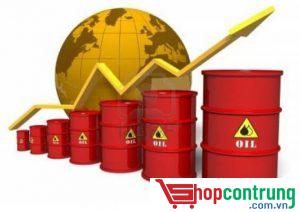 Dùng dầu hỏa để diệt mọt